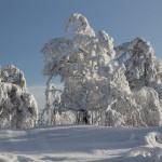 Аша, зима 2013, фото Андрея Талевлина